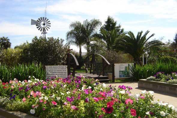 La voz de san carlos municipales for Jardin botanico san felipe
